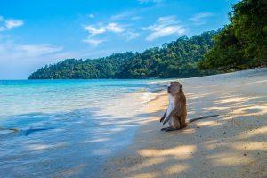 thailandia-mare