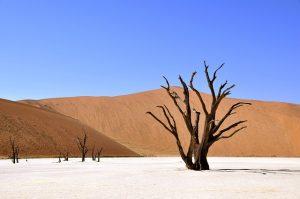 Namibia-deserto
