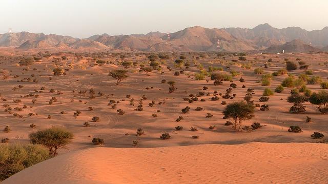 Oman-deserto-2