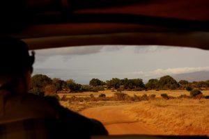 safari-macchina